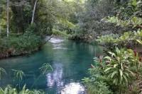 Blue Hole and River Gully Rain Forest Adventure Tour from Montego Bay