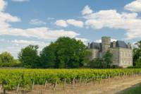 Bordeaux Shore Excursion: Full-Day Private Medoc Wine Tour