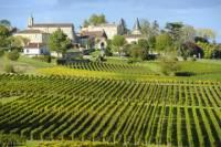 Bordeaux Shore Excursion: Private St-Emilion Half-Day Trip