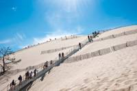 Bordeaux Super Saver: Small-Group Trip to Arcachon with Oyster Tasting and Lunch plus Médoc Wine Tour