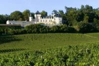 Bordeaux Wine Tour: Three Wine Regions, Chateaux Wine Tastings and Lunch