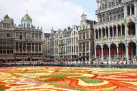Brussels Sightseeing Tour Including the European Parliament