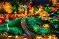 Butchart Gardens Holiday Lights Tour