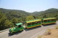 Butterfly Train in Rhodes