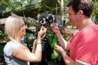 Cairns Tropical Zoo Wildlife Encounter