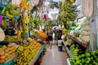 Cancun Food and Markets Tour Plus Cooking Class
