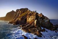 Cape Point and Peninsula Tour from Cape Town