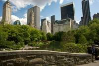 Central Park Walking Tour and Photoshoot