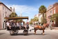 Charleston Carriage Ride