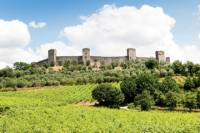 Chianti and Siena Half Day Tour with Dinner in Piazza del Campo