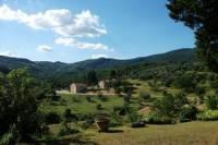 Chianti Region Wine Tasting Half-Day Trip from Florence