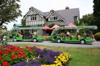Christchurch Botanic Gardens Tour and Hop-On Hop-Off Tram with Optional Gondola and Avon River Punting