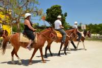Cozumel Horseback Ride and Beach Getaway
