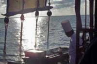 Cozumel Lobster Dinner Cruise