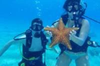 Cozumel Shore Excursion: Discover Scuba Diving Course