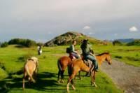 Cusco Horseback Riding Tour to Sacsayhuaman, Qenqo, Puca Pucara and Tambomachay