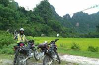 Daily Hanoi Motorbike Tour to Duong Lam Village and Pagodas