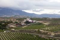 Day tour to Rioja Wine Region from San Sebastián