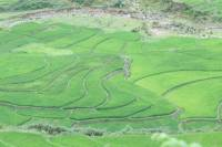 Day Trip of Sapa Valley Including Trek in Hoang Lien National Park
