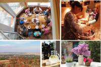 Day with A Local: Full-Day Cultural Family Experience including 4-Course Dinner
