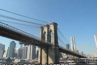 Delux New York 1-Day Tour with Japanese Guide - Mybus