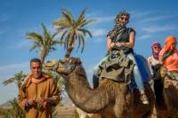 Desert and Palm Grove Camel Ride from Marrakech Including Berber Village Visit