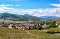 Discover the Wines of Alsace in One Day
