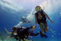 Dive and Drive Cozumel Adventure