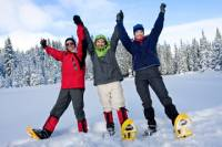 Dog Sledding and Snowshoeing Winter Adventure from Anchorage