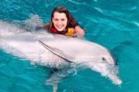 Dolphin Swim Adventure Including Aquaventuras Park Entrance