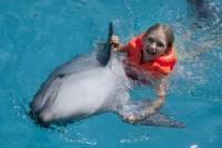 Dolphin Swim and Ride Program in Cancun