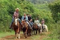 Dominican Republic Countryside Horseback Riding from Puerto Plata