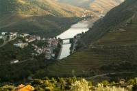 Douro Experience Private Tour