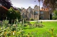 Dunedin Shore Excursion: City Sightseeing with Olveston House Tour