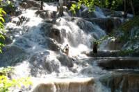 Dunn's River Falls and Fern Gully Highlight Adventure Tour from Ocho Rios