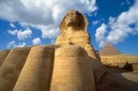 Egypt Highlights from Marsa Alam