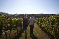 Experience Yarra Valley: Beer, Cider, Wine and Food from Melbourne