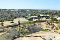 Family Aruba Sightseeing Tour