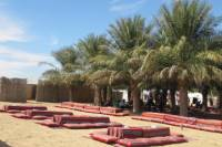 Family Desert Camp Safari and Activities from Abu Dhabi Including Dune Bashing and BBQ Dinner