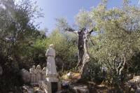 Fatima Pilgrim Tour