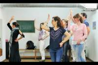 Flamenco Dance Lesson with Optional Show in Seville
