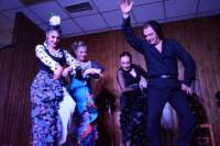 Flamenco Show with Dinner and Workshop