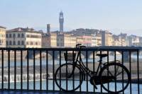 Florence and Tuscany Bike Tour Including Lunch