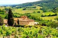 Florence to Greve in Chianti Tour with Wine Tasting Experience