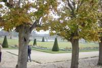 Fontainebleau and Barbizon Half-day Tour with Japanese Guide