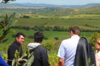 Food and Wine Tour to Sardinian Wineries