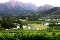 Franschhoek Cape Fold Mountain Hike from Cape Town