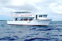 Freeport Glass-Bottom Boat Cruise