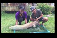 Freshwater Lake Fishing Tour from Koh Samui