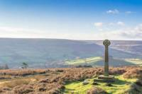 Full-Day Best of The North Yorkshire Moors Tour from York
